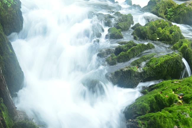 荔波茂兰自然风景区图片