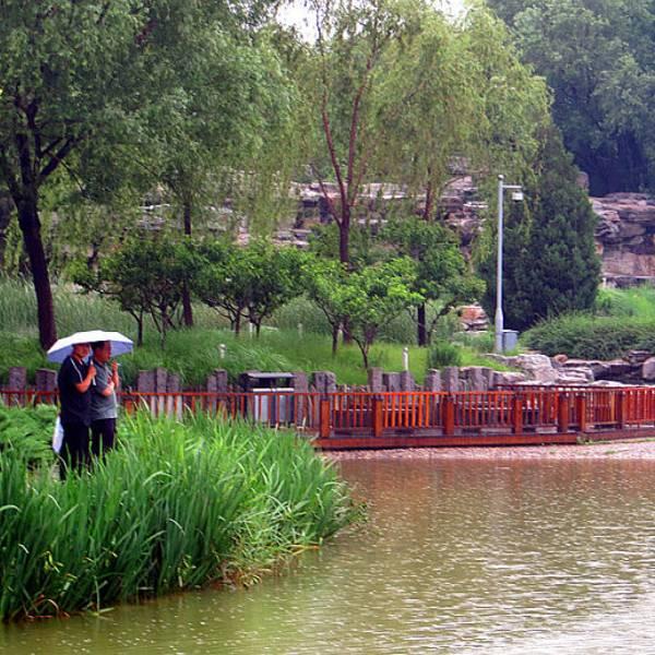 读书 公园 景观设计