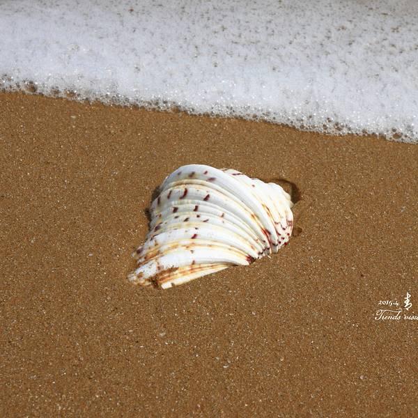 2019青岛黄岛滩门票,金沙金沙黄岛滩游玩攻略凤凰山二日自助游攻略图片
