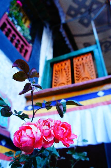朝圣之行西藏九日自由行物语_拉萨v物语攻略攻略学院口袋2道具攻略图片