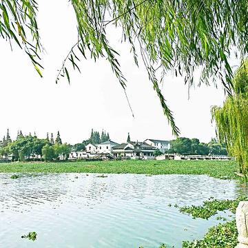 亭林公园旅游景点攻略图