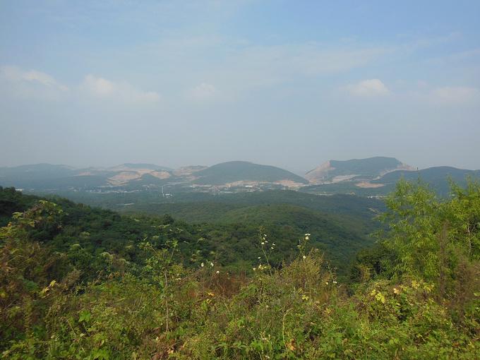 宝华山国家森林公园图片