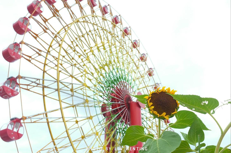 充满遗憾的成人礼——日本_东京旅游攻略_自助游攻略_去哪儿攻略社区