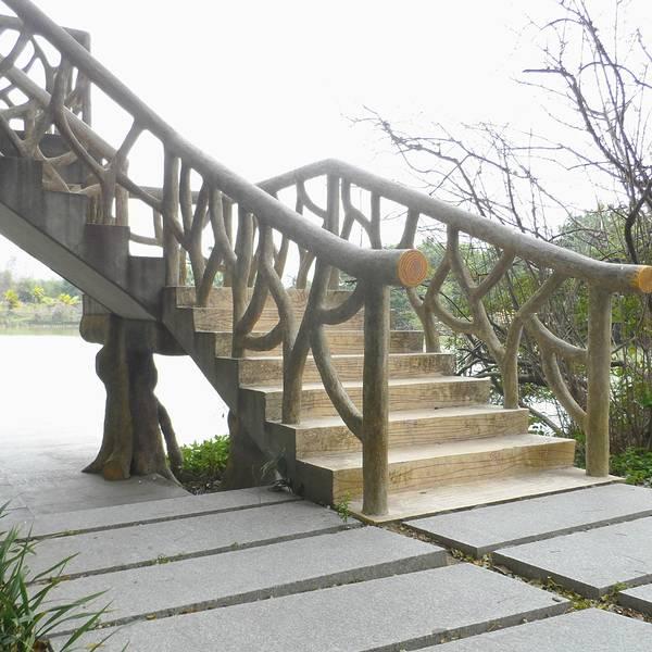 星湖湿地公园,是一个国家级的湿地公园,位于肇庆市七星岩风景区内