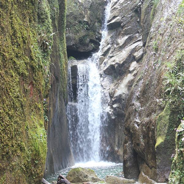 南岭国家森林公园旅游攻略