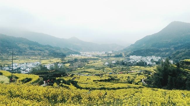 """三月黄山-宏村-婺源""""村""""游游记"""