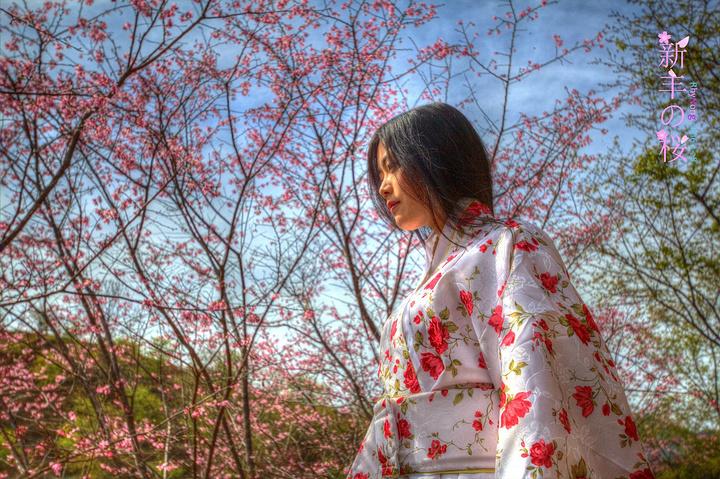 在计划来赏樱花的时候,我就打算拍一组和服.