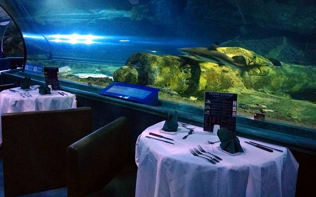 关岛海底世界水族馆旅游攻略
