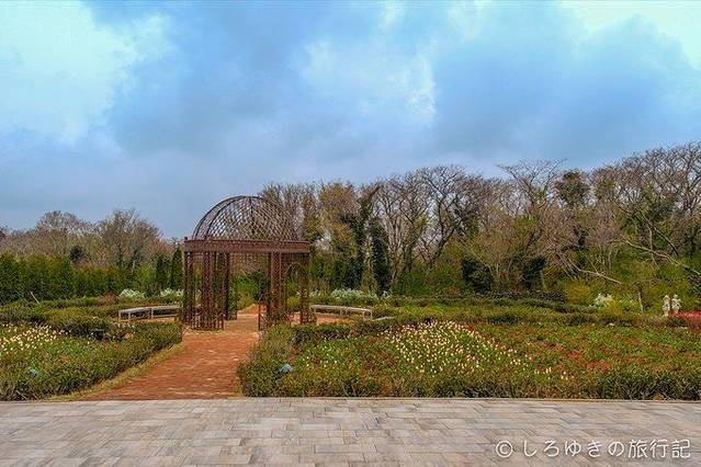济州森林小火车生态公园图片