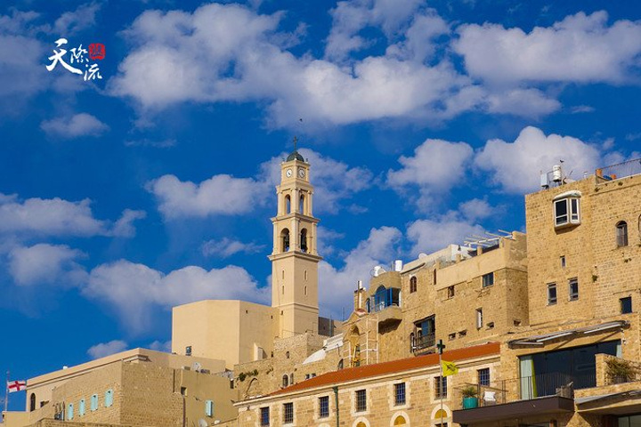 """""""也是世界上最古老的城市之一_雅法老城""""的评论图片"""