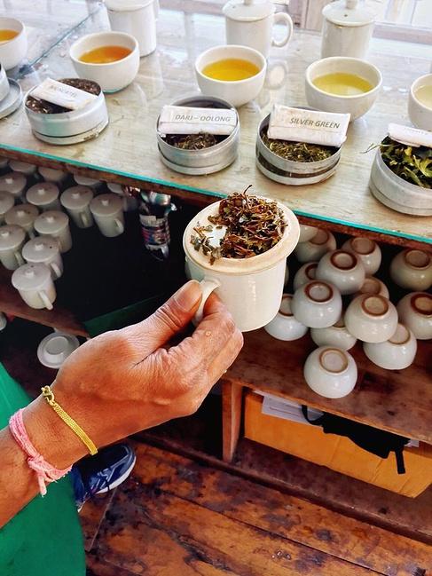 makaibari茶厂图片