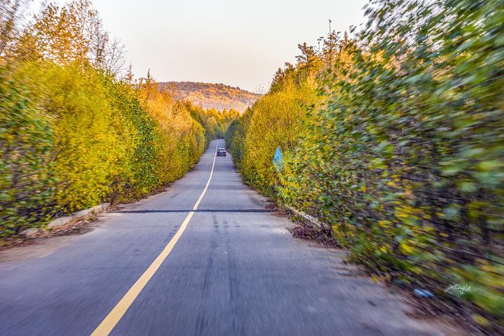白鹿岛门票80一位,不过淡季,可以谈谈价格优惠一些的,白鹿岛景区核心景观是看激流河环绕的两个小岛。激流河又名贝尔茨河,是中国北部原始林区水面最宽、弯道最多、落差最大的原始森林河。它发源于大兴安岭西北麓的三望山,全长467.9公里,流域面积15845平方公里,河道平均比降0.