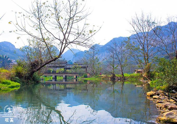 昆明旅游攻略 春城之约 滇东南之行  坝美村现有119户,600余人,全都
