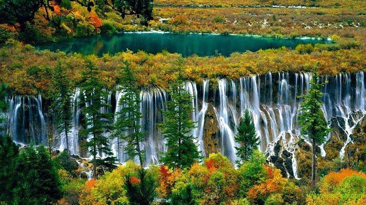 """九寨沟位于四川省阿坝藏族羌族自治州境内,地处青藏高原向四川盆地过渡地带,距离成都市400多千米,是一条纵深50余千米的山沟谷地,总面积64297公顷,森林覆盖率超过80%。因沟内有树正寨、荷叶寨、则查洼寨等九个藏族村寨坐落在这片高山湖泊群中而得名。九寨沟国家级自然保护区主要保护对象是以大熊猫、金丝猴等珍稀动物及其自然生态环境。有74种国家保护珍稀植物,有18种国家保护动物,还有丰富的古生物化石、古冰川地貌。""""九寨归来不看水"""",是对九寨沟景色真实的诠释。泉、瀑、河、滩108个海子,构"""