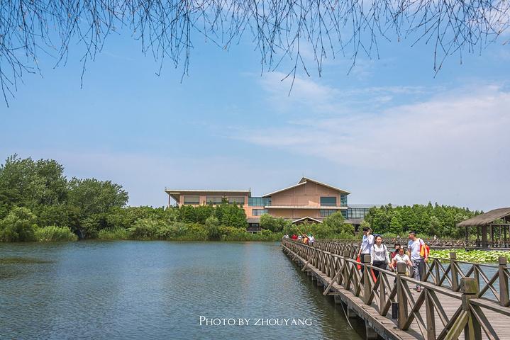 溱湖濕地風景區位于中國著名的三大洼地之一的里下河地區,古長江與