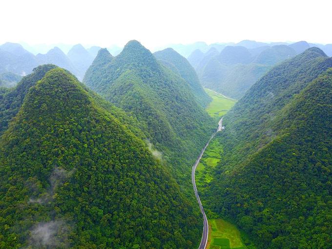 贵州荔波茂兰石上森林,五眼桥图片图片