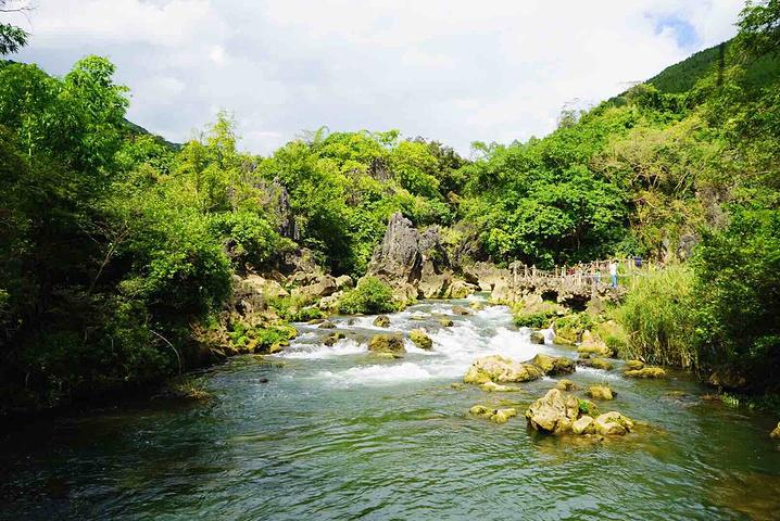 """黄果树瀑布风景区内,天星桥景点内的一处风景_水上石林""""的评论图片"""