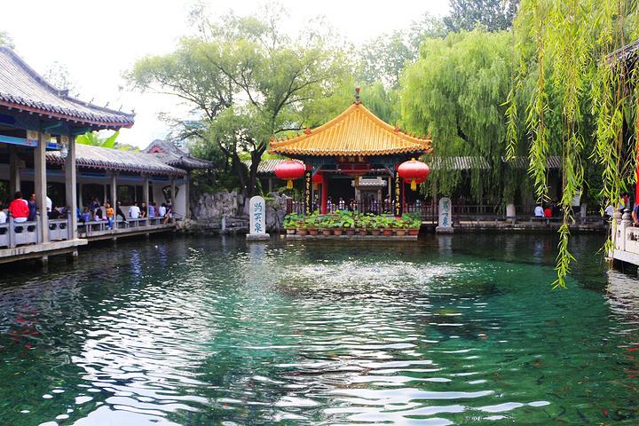 """趵突泉泉池呈长方形,东西长三十米,南北宽二十米,周围绕以石栏。池边俯视,一泓碧水,清如明镜;三泉涌涛,喷雪溅玉;势如鼎沸,声若雷鸣;水草袅袅,鱼翔浅底;绿叶红鳞,辉映其间。济南""""家家泉水,户户垂杨""""的独特景色是怎么形成的呢?济南的泉水,来源于济南市区以南,锦绣川以北的广大地区,这些地区的岩石是约四亿年以前形成的一层很厚的、质地比较纯粹的石灰岩。这种石灰岩地区,地表有溶沟、溶槽,地下有漏斗、溶洞、暗河以及钟乳石,便于大量的雨水和地表水渗入地下。山区的石灰岩层,以大约三十度的斜度,由南"""