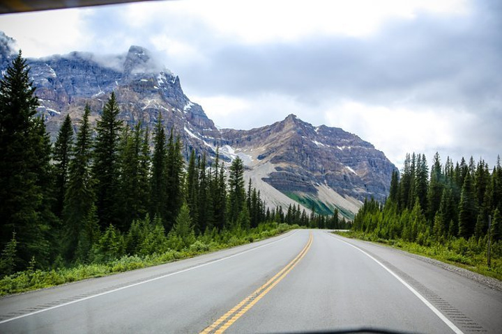 冰原大道被视为北美最美丽的公路之一,从班夫国家公园至贾思珀国家公园,绵延229公里,沿途可看到瀑布、翡翠湖、草原和白雪覆顶的山峰的景致变化,美丽如一幅画卷。仰望海拔最高3300米的众多山峰、欣赏100多片冰川、亚高山草甸、纯净晶莹的瀑布、冰蓝澄澈的湖水和大量野生生物。这条景色壮观的道路一年四季均充满魅力。