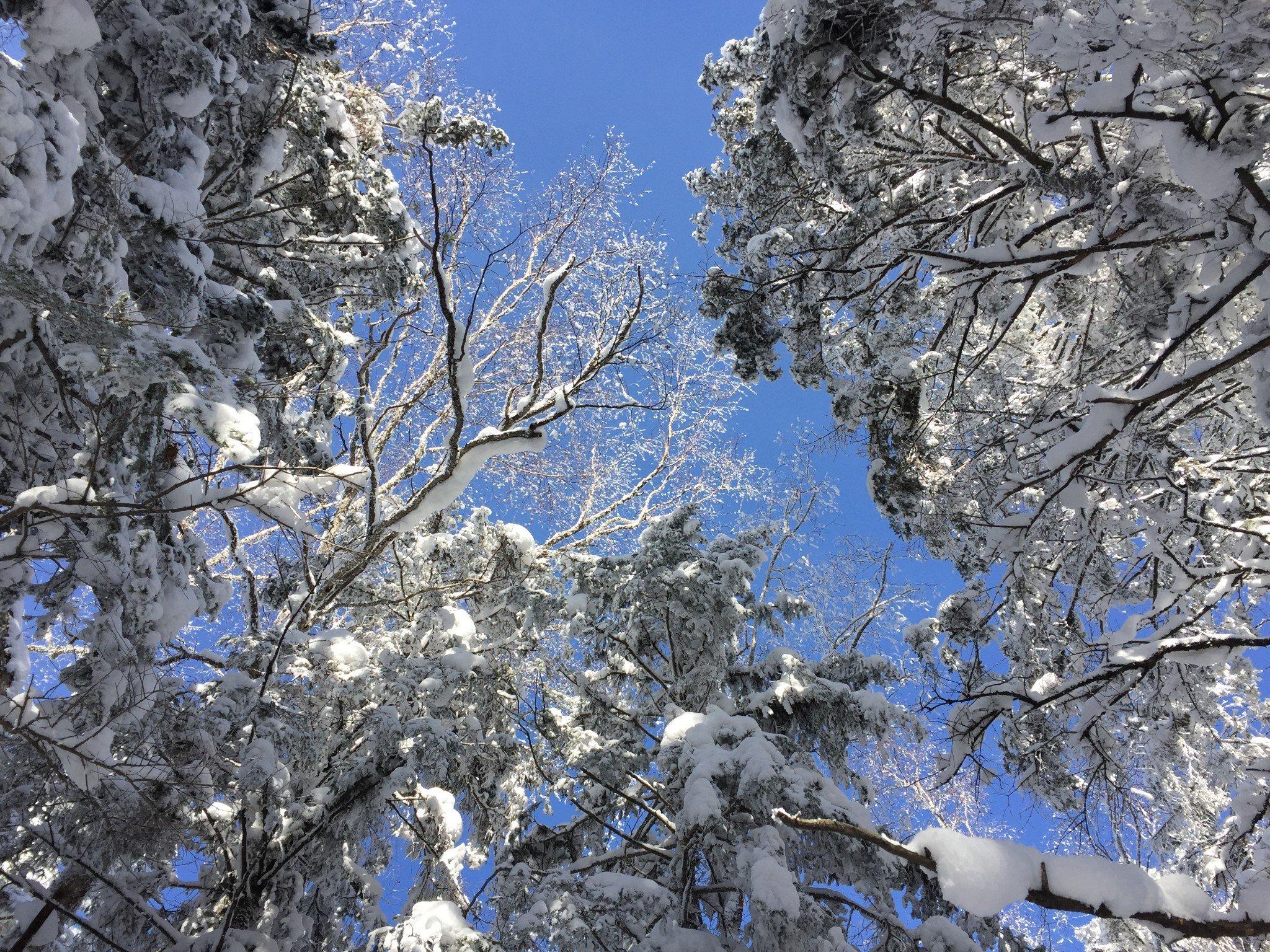 长白山冬日恋歌(二),2017岁末见证友情的冰雪之旅