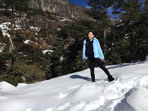 轿子雪山旅游景点攻略图