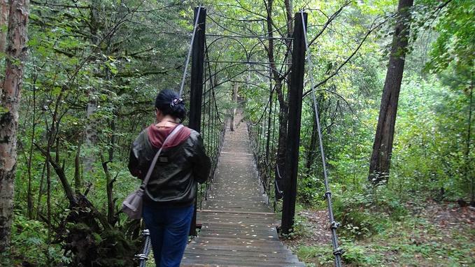 五营国家森林公园图片