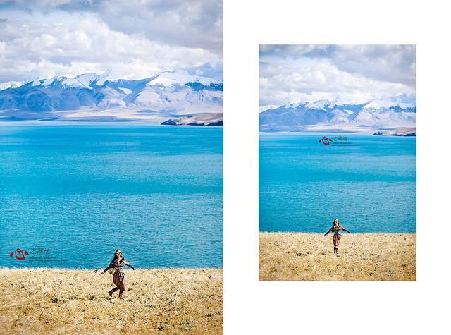 细叶西伯利亚蓼,藏北蒿草