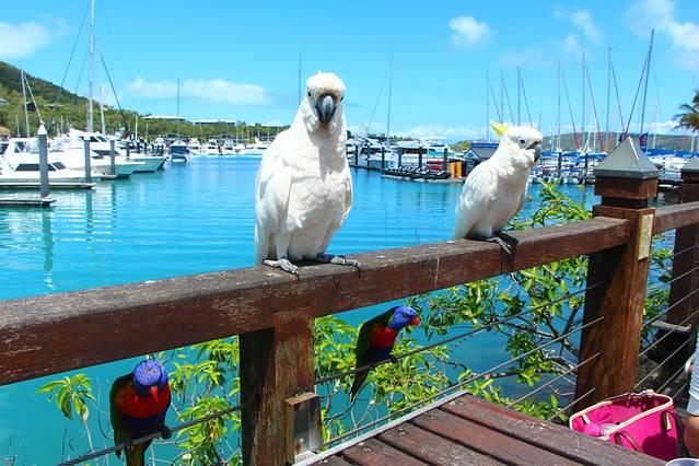 5,岛上以阳光海滩而闻名,防晒霜是旅行必备品,不然很容易被晒伤.