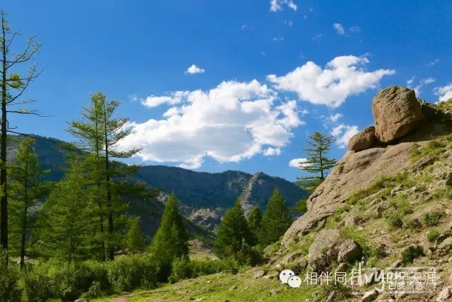 第五天:蒙古国国家森林公园——特日勒基图片