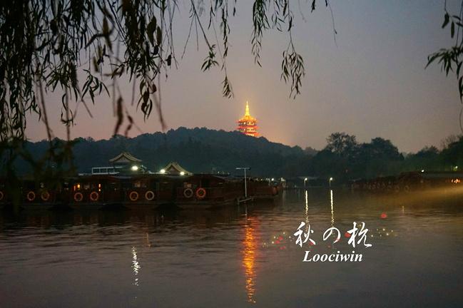 因为一片枫叶,而爱上深秋的杭州-旅游分享-E都市 ...