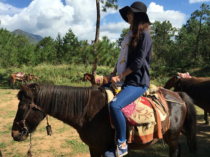 骑马走了一趟茶马古道
