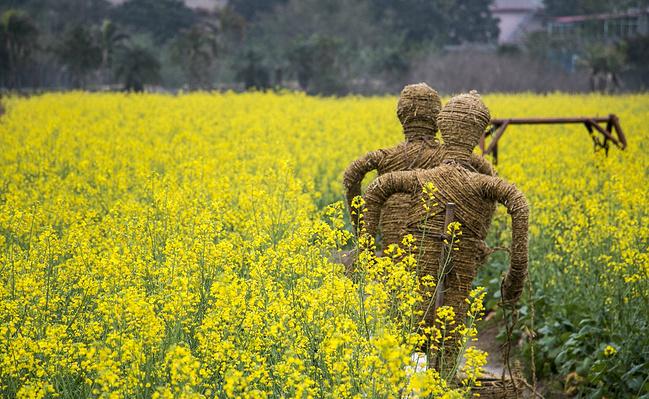 春天,去『最艺术客栈』看花观海逛欧洲_深攻略那个攻渣201图片