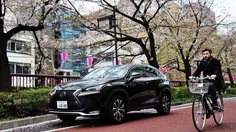 从关东到关西 穿行日本的极致匠心之旅