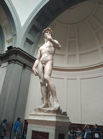 大卫雕像头部侧面图片