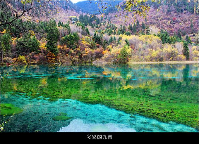 九寨溝風景區圖片