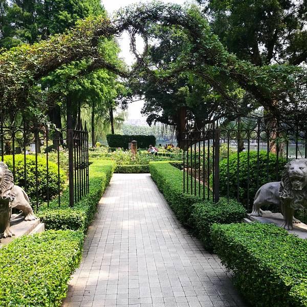 公园是免费参观的,里面大树参天