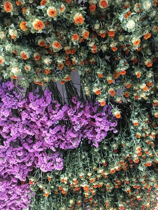 紫色花圈素材