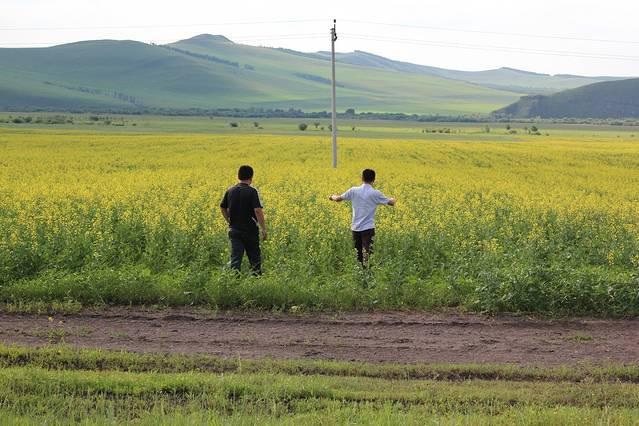 怕错过这一生的风景!大草原展现给我们的.随着北上.渐入佳境!