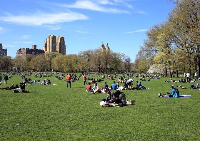 欣赏了陈列的化石标本,接着到纽约中央公园去感受真实的自然风光.图片