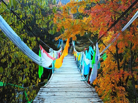 2018色尔古藏寨_旅游攻略_门票_地址_游记点评,黑水县