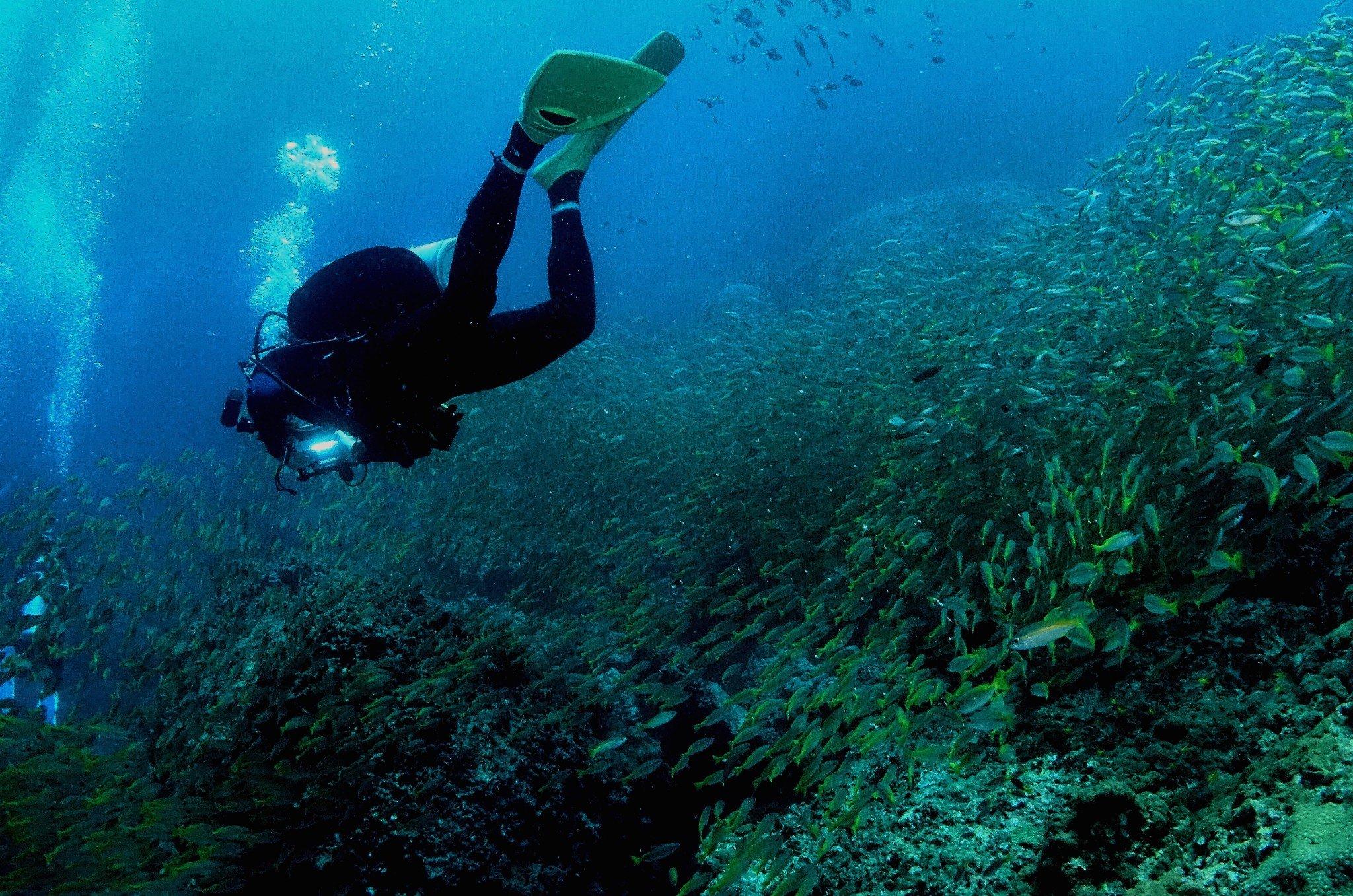 无法抗拒的诱惑——潜水泰国行