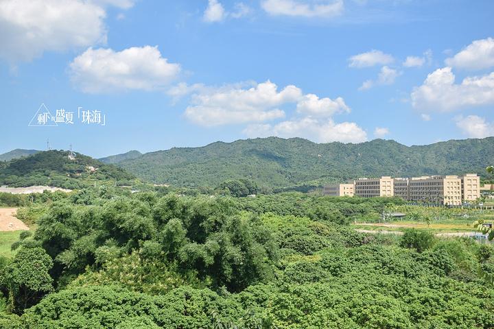 三层望出去的风景,很绿,远处那几座应该是学校吧