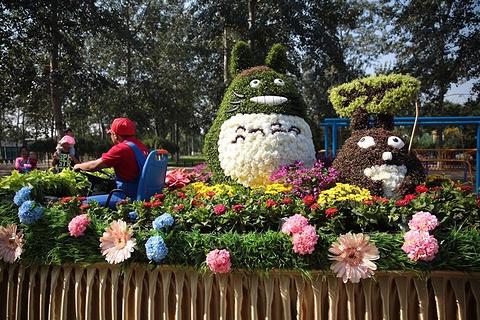 世界花卉大观园的图片