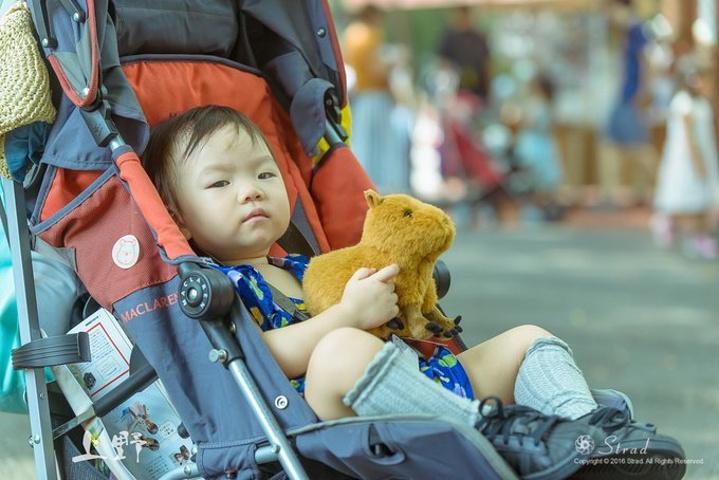 上野动物园自然是为了小龙虾来的,占地不是很大,但环境和格局都不错