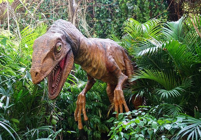 广州旅游攻略 广州长隆野生动物园 一日游~  侏罗纪 金蛇秘境 雨林