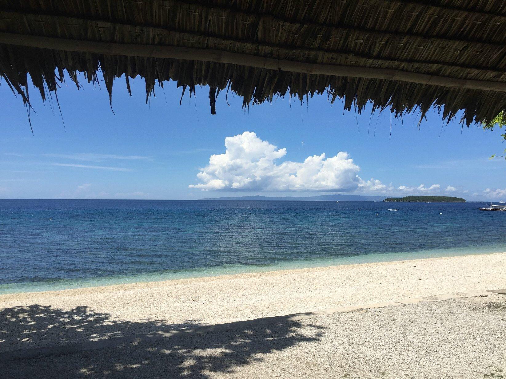 菲律宾杜马盖地,oslob鲸鲨,APO岛珊瑚雨林,苏米龙一岛一酒店