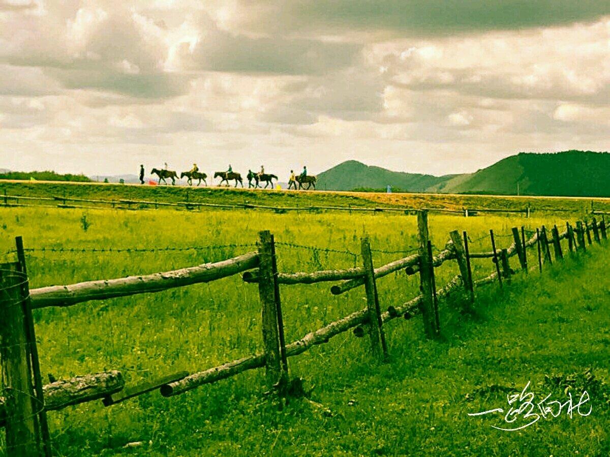 一路向北一一缘起草原