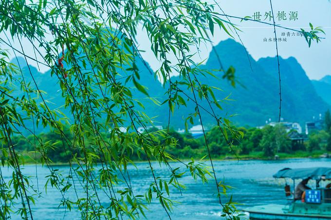 四月桂林预览,浓缩的春天图片