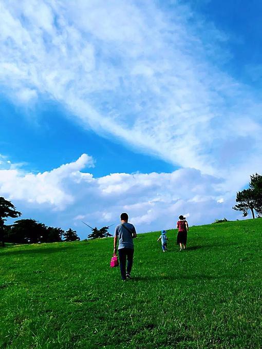 宜昌旅游攻略 誤入百里荒童話世界,感受高山草原不一樣的美!
