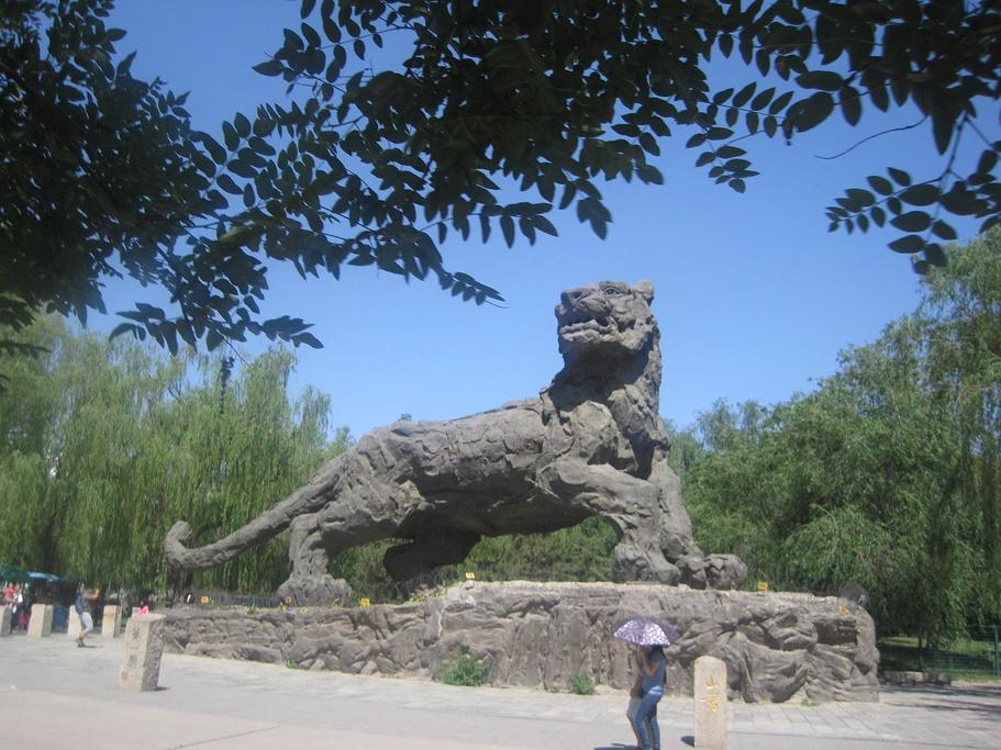 北京动物园评论